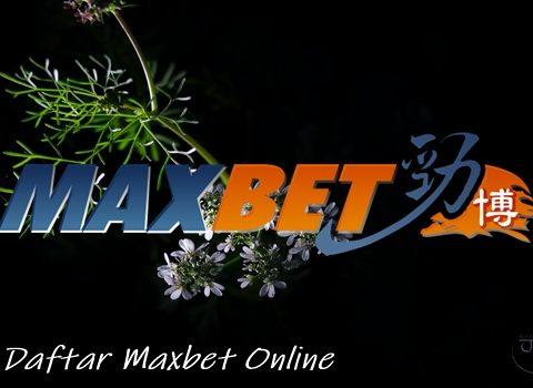Panduan Untuk Pemula Daftar Maxbet Online Dengan Berbagai Platform